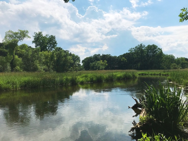 Minehaha Creek Minnesota