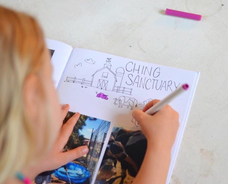 Girl coloring in drawings