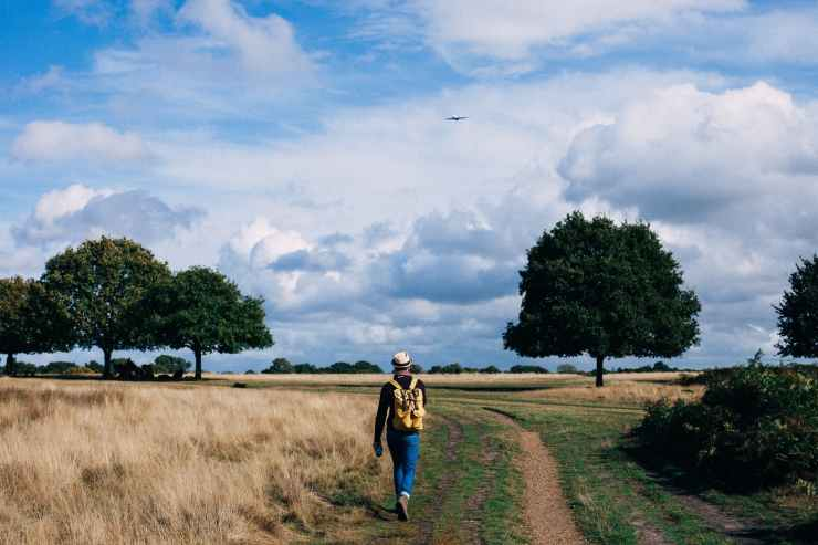 person in yellow and black backpack walking on green grass field under cloudy blue sky during daytime
